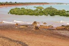 Röd och turkoskust av det Australien bakgrundslandskapet Royaltyfri Bild