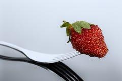 Röd och våt jordgubbe på en form med reflexion på skinande surfac Arkivfoton