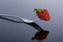 Röd och våt jordgubbe på en form med reflexion på skinande surfac Fotografering för Bildbyråer