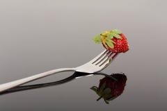 Röd och våt jordgubbe på en gaffel med reflexion på skinande surfac Arkivbilder
