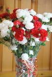Röd och vit fröjd Royaltyfri Foto