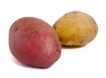 Röd och vit potatis royaltyfri foto