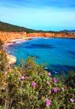 Röd ockrakustlinje för Sa Caleta Ibiza Arkivbild