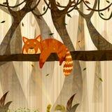 Röd panda för löst djur i djungelskogbakgrund Royaltyfria Bilder