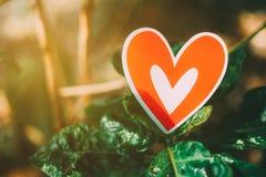 Röd pappers- hjärtadeg med träd Arkivfoton