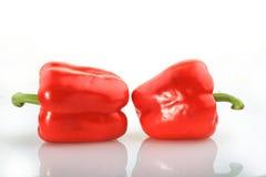 Röd paprika på vitbakgrund Royaltyfri Foto