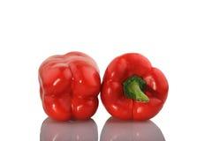 Röd paprika på vitbakgrund Arkivbild
