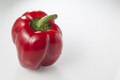 Röd peppar över vit bakgrund Royaltyfria Foton