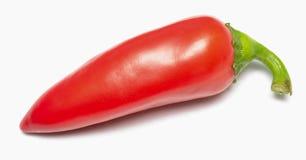 Röd peppar Arkivfoton
