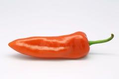 Röd peppar Arkivbilder