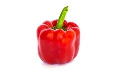 Röd peppar Fotografering för Bildbyråer