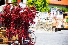 Röd peppar 5 royaltyfri foto