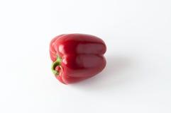 Röd peppar för singel sött Royaltyfria Foton