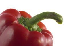 Röd peppar för svett Royaltyfri Foto