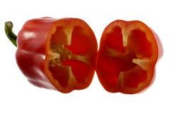 Röd peppar för svett Arkivbild
