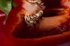 Röd peppar kärnar ur makro Royaltyfri Foto