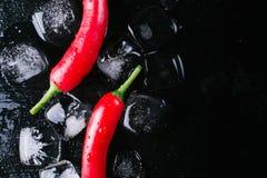 Röd peppar och is på en svart wood bakgrund, ny varm mat på tappningtabellen, kall kubis för frysning, åtlöje upp bästa sikt arkivbild