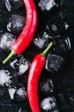 Röd peppar och is på en svart wood bakgrund, ny varm mat på tappningtabellen, kall kubis för frysning, bästa sikt för modell arkivbilder