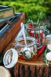 Röd peppar och rosmarin i den glass kruset Arkivbild