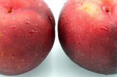 Röd persika Arkivbilder