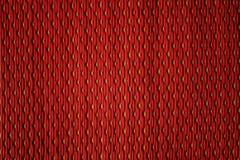 Röd plast- matsmodell Royaltyfria Bilder