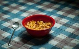 Röd platta med cornflakesmysli på en rutig bordduk royaltyfria foton