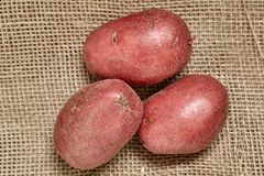 Röd potatis på den svarta wood tabellen i kök Preperation för att laga mat royaltyfria foton