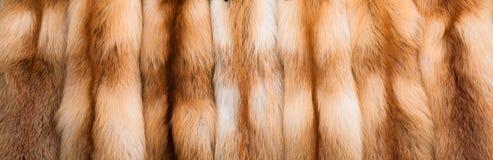Röd rävpäls Arkivbild