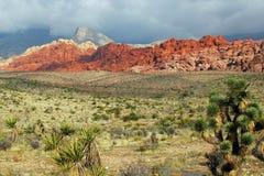 Röd röd kanjon 5 Nevada Arkivbild