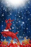 Röd ren med stjärnor Arkivfoto