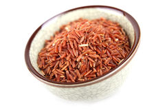 röd rice Arkivfoton