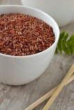 röd rice Royaltyfri Foto