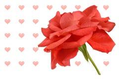Röd ro med hjärta formade ballonger Royaltyfri Fotografi