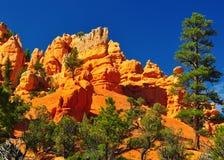 röd rock utah för kanjonbildandepark Royaltyfria Bilder