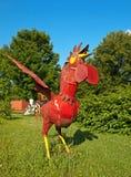 röd rooster royaltyfri fotografi