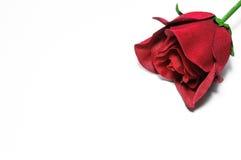 Röd ros av torkduken Arkivbilder