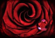 Röd ros för makro med Crystal Heart fotografering för bildbyråer