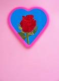 Röd ros för riktig förälskelse Arkivbilder
