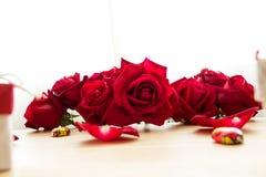 Röd ros med choklad och kronblad Arkivbilder