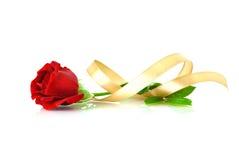 Röd ros med det guld- bandet över vit royaltyfri fotografi