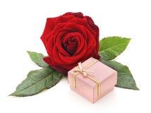 Röd ros med gåvaasken Royaltyfria Bilder