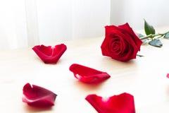 Röd ros med kronblad på den wood tabellen Royaltyfria Bilder