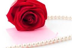 Röd ros med rosa färgpappersanmärkningen Royaltyfri Foto