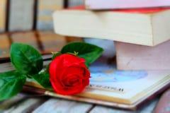 Röd ros och boken Arkivfoton