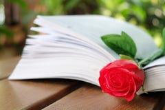 Röd ros och boken Fotografering för Bildbyråer