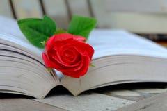 Röd ros och boken Arkivfoto