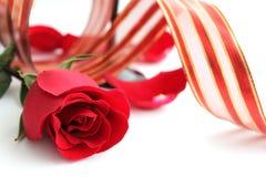 Röd ros och rött band Arkivfoton