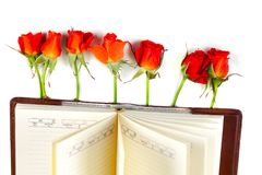 Röd ros på en anteckningsbok på en vit bakgrund Royaltyfri Fotografi