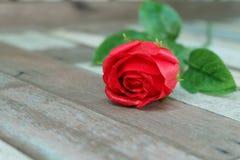 Röd ros på tappninggolv Arkivbild