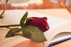 röd rosa blomma på boken i arkivromansboken för kultur för universitet royaltyfri bild